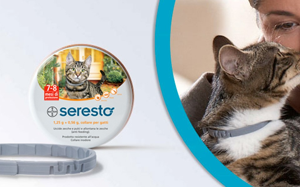 seresto-gatto